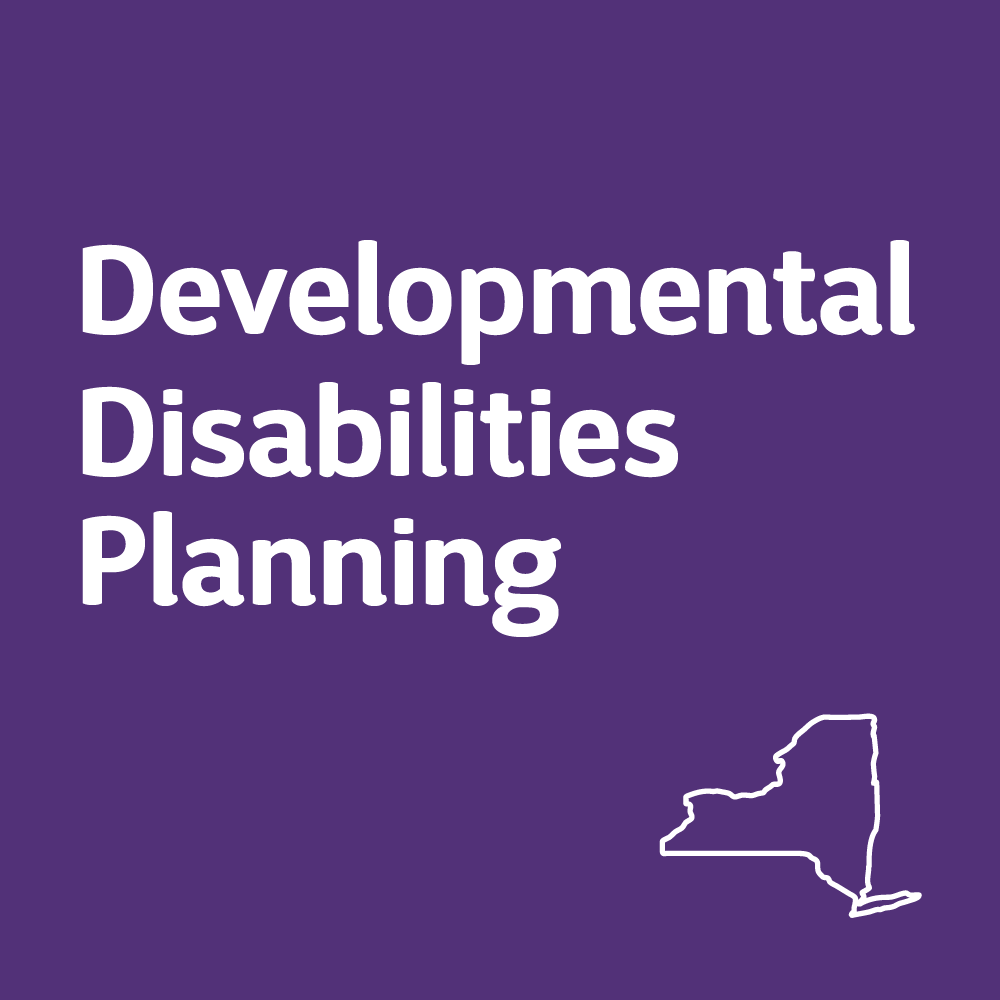 The New York State Developmental Disabilities Planning Council (DDPC)