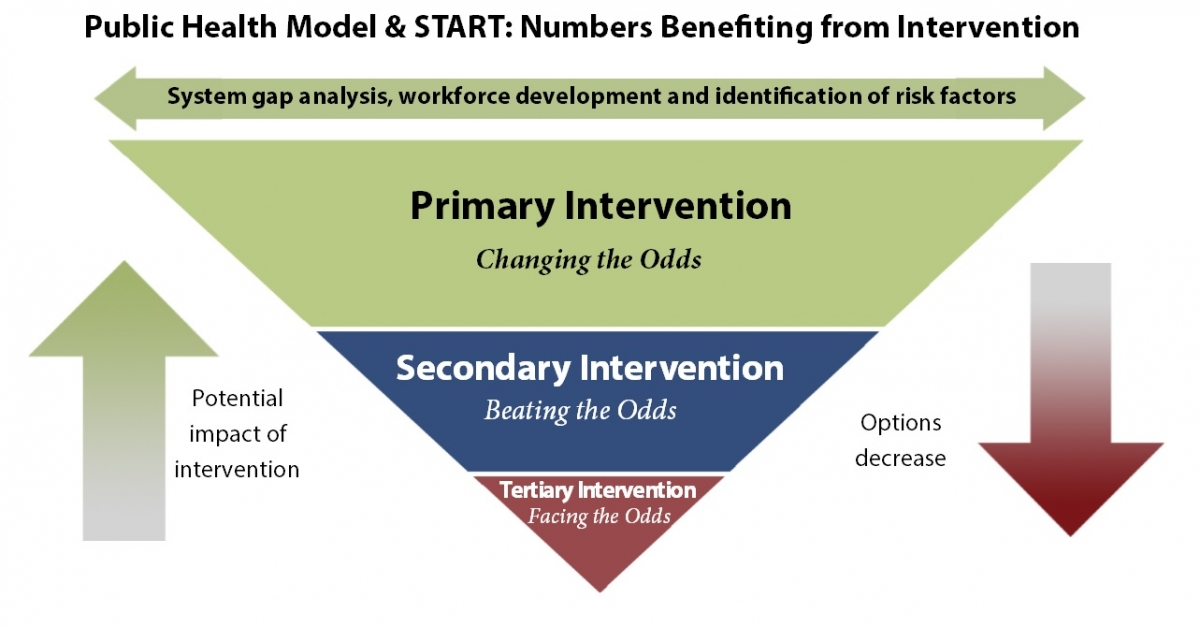 Triangle graphic describing the three stages of crisis prevention and intervention